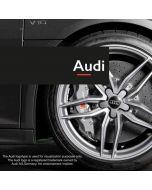 Fälglås till Audi fälgar Rimgard 4-pack
